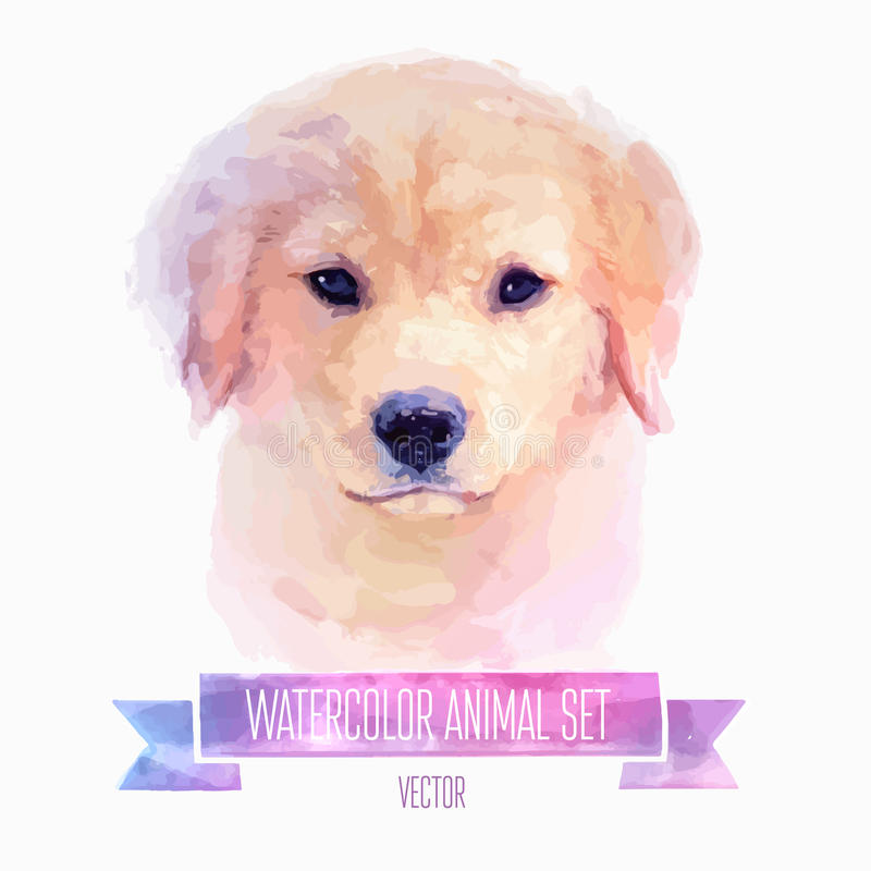 Grupo do vetor de ilustrações da aquarela Cão bonito ilustração stock