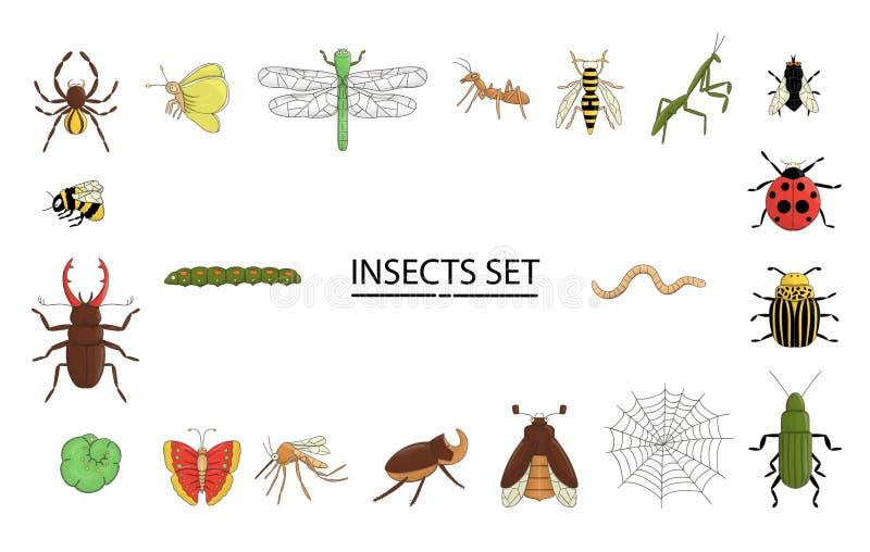 Grupo do vetor de insetos coloridos ilustração do vetor