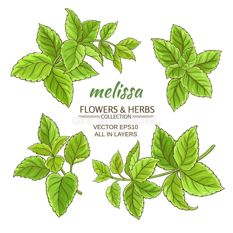 Grupo do vetor de Melissa ilustração royalty free