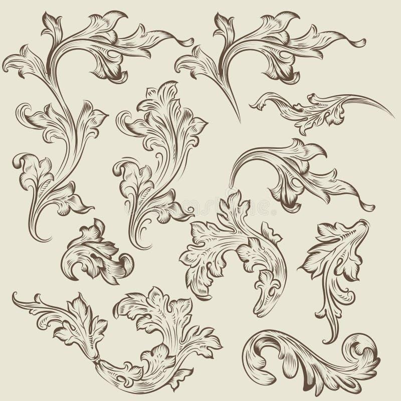 Grupo do vetor de ornamento do redemoinho do vintage para o projeto ilustração stock