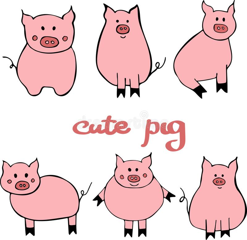 Grupo do vetor de porco bonito dos desenhos animados Ilustração com o símbolo do ano novo 2019 ilustração do vetor