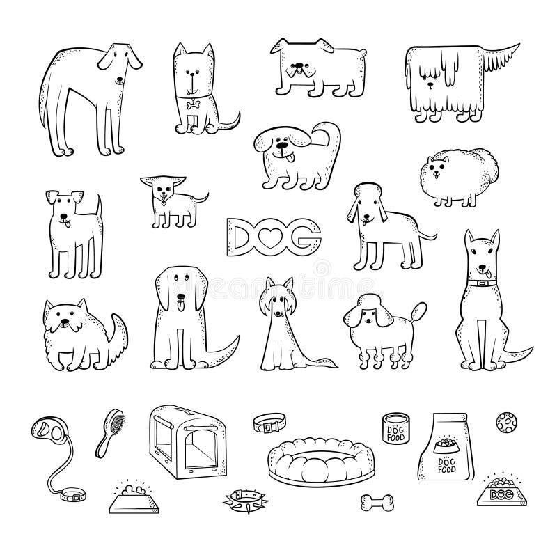 Grupo do vetor de raças diferentes do cão Artigos para importar-se com um animal de estimação e alimentar Caráteres engraçados do ilustração royalty free