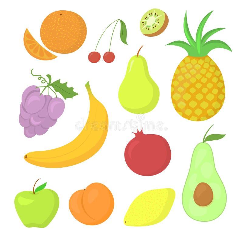 Grupo do vetor do fruto ilustração do vetor