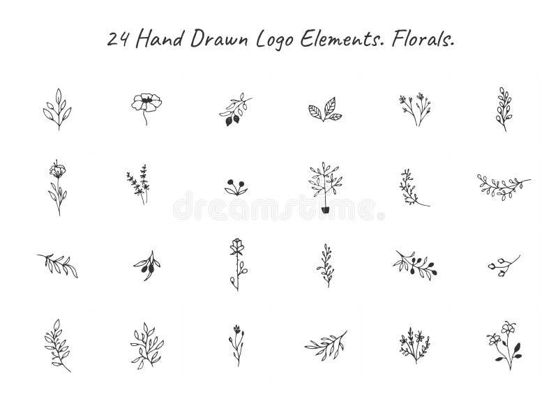 Grupo do vetor mão floral de elementos tirados no estilo elegante e mínimo ilustração stock
