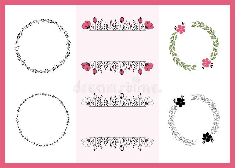 Grupo do vetor mão floral de quadros tirados Flores e folhas no arranjos elegantes ilustração royalty free