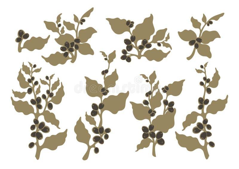 Grupo do vetor Plantas orgânicas para o vegetariano Ramo do café ilustração do vetor