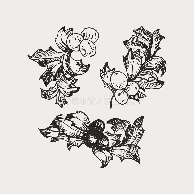 Grupo do vintage do vetor de visco tirado mão, plantas da decoração do Natal da tradição Grande para o convite e o cumprimento ilustração royalty free