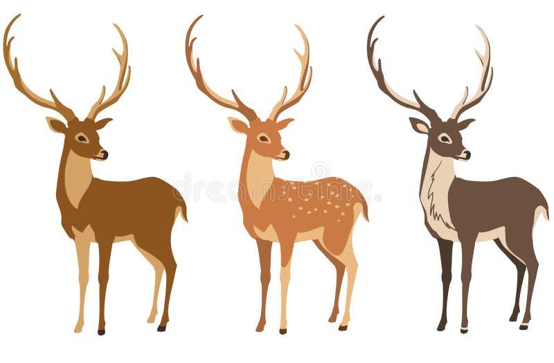Grupo dos cervos ilustração royalty free