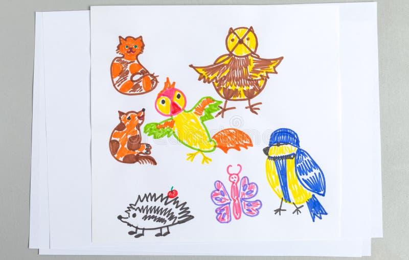 Grupo dos desenhos da criança de pássaros diferentes e de insetos dos animais selvagens imagens de stock royalty free