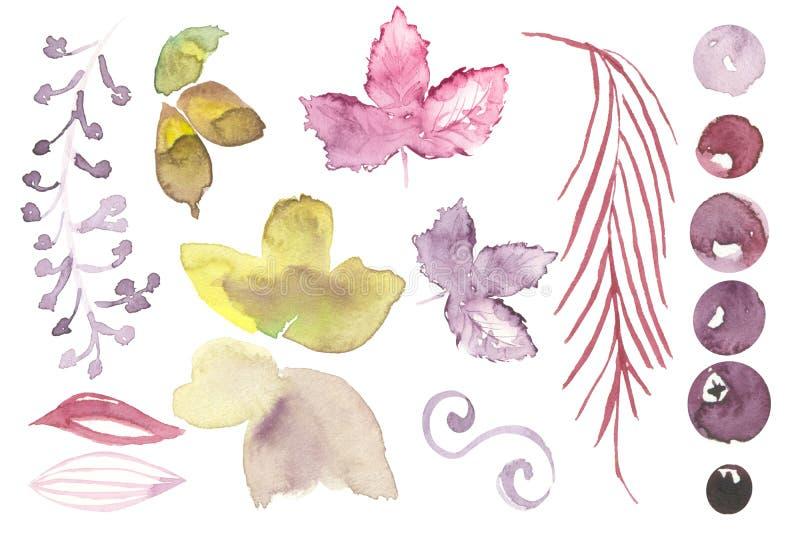 Grupo dos elementos florais violetas da aquarela para a decoração ilustração stock