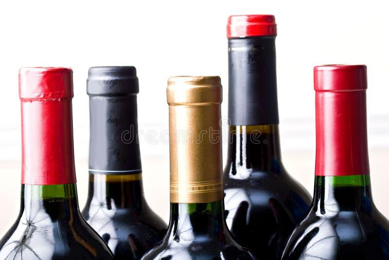 Grupo dos frascos de vinho fechados isolados fotos de stock