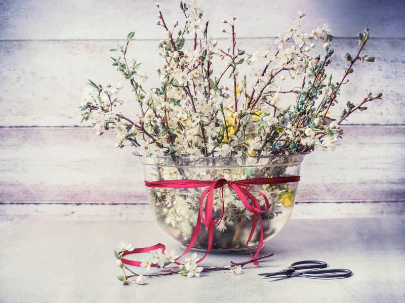 Grupo dos galhos da flor de cerejeira da primavera no vaso com fita e tesoura na tabela rústica na parede de madeira imagens de stock royalty free