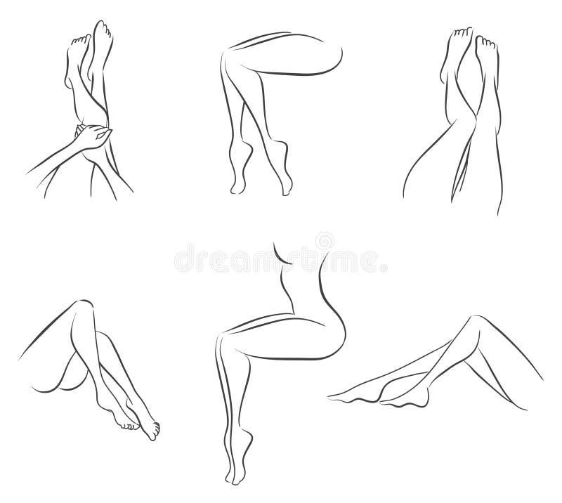 Grupo dos pés das mulheres ilustração stock