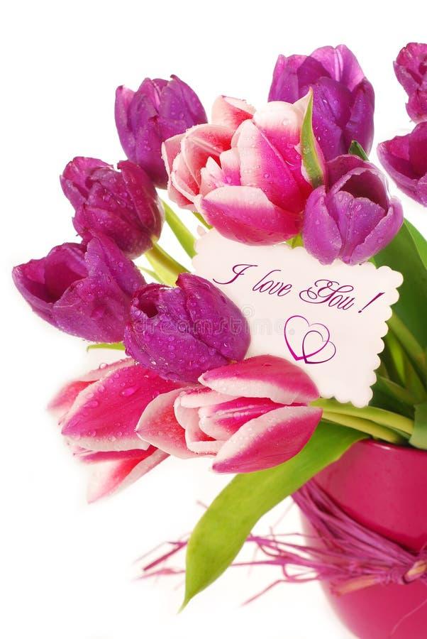 Grupo dos tulips com cartão de cumprimentos imagens de stock