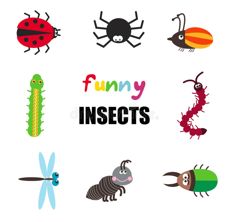 Grupo engraçado do vetor de insetos dos desenhos animados ilustração do vetor