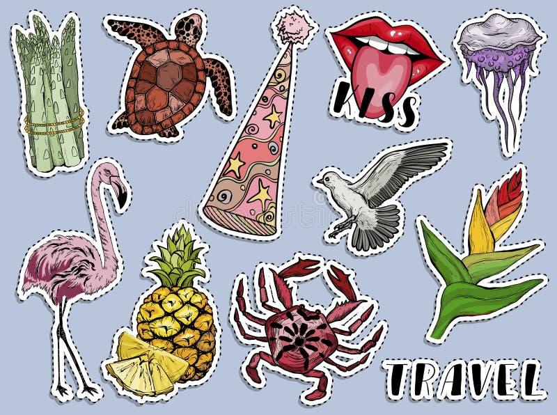 Grupo exótico da etiqueta do verão colorido Animais e plantas de Paradise ilustração do vetor