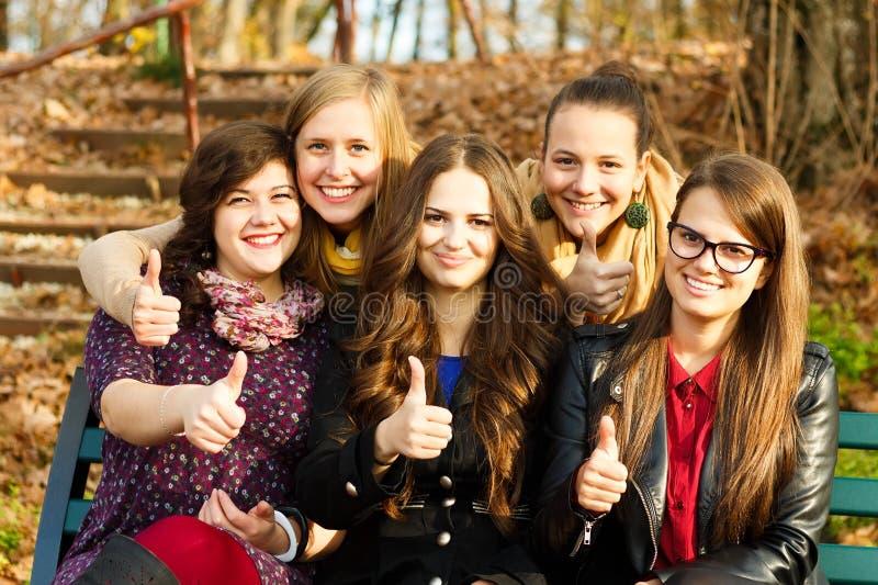 Grupo feliz de estudantes fotografia de stock royalty free