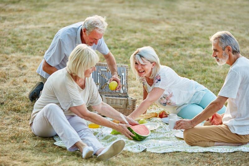 Grupo feliz de sêniores no parque em um piquenique fotos de stock royalty free