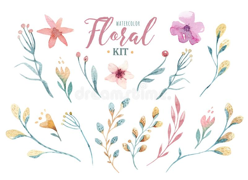 Grupo feliz tirado mão de easter da aquarela com projeto floral e das flores do salgueiro ramos do bichano-salgueiro, isolados mo ilustração do vetor