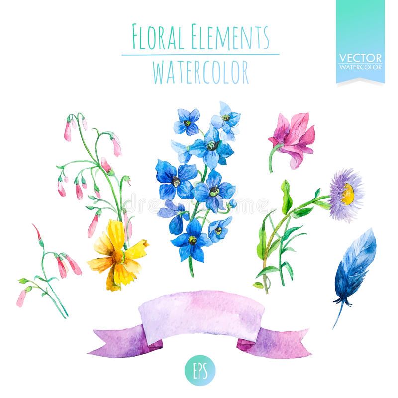 Grupo floral com as flores da aquarela para cartões do verão ou da mola, convites, insetos, bandeiras ou projeto dos cartazes Vet ilustração stock