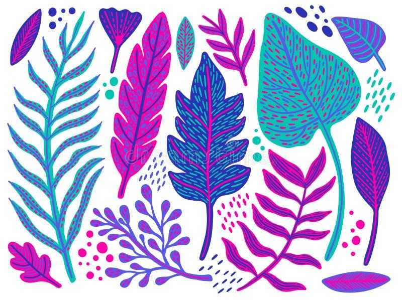 Grupo floral sem emenda com um projeto da fantasia com flores exóticas e as folhas tropicas em um fundo branco O elegante a coleç ilustração do vetor