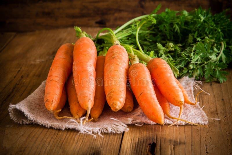 Grupo fresco das cenouras no fundo de madeira fotografia de stock
