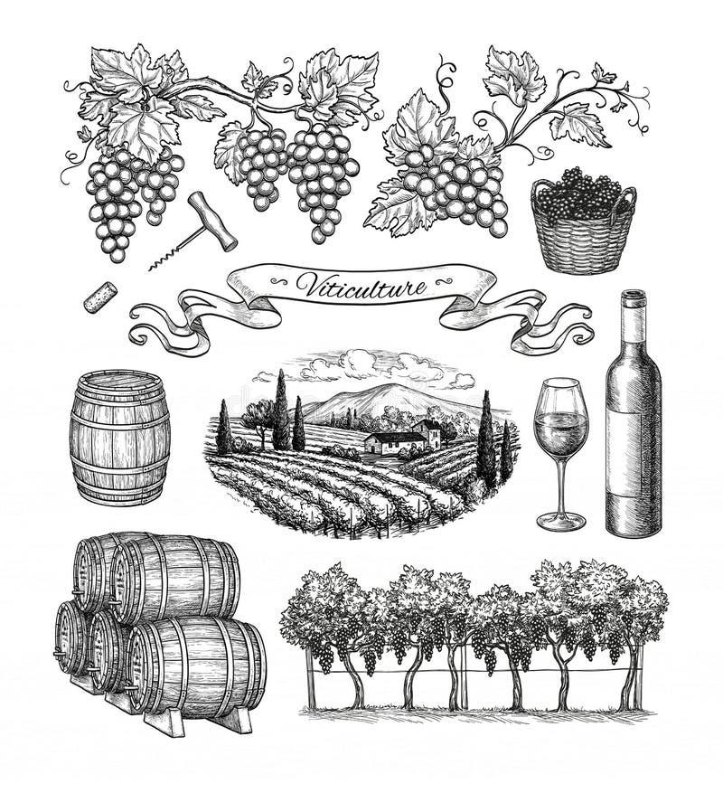 Grupo grande da viticultura ilustração stock