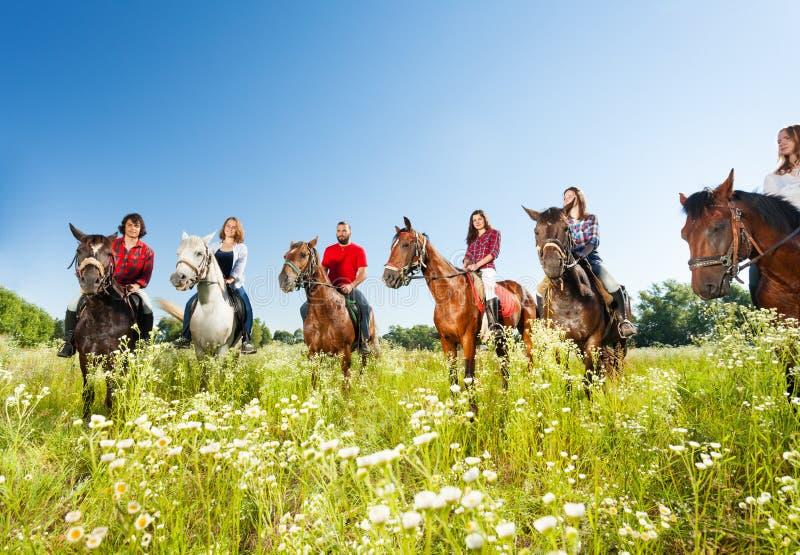 Grupo grande de cavaleiros de horseback no prado florido fotografia de stock