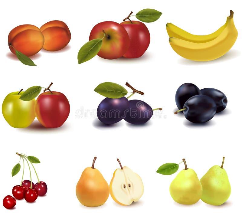 Grupo grande de diversa fruta. libre illustration