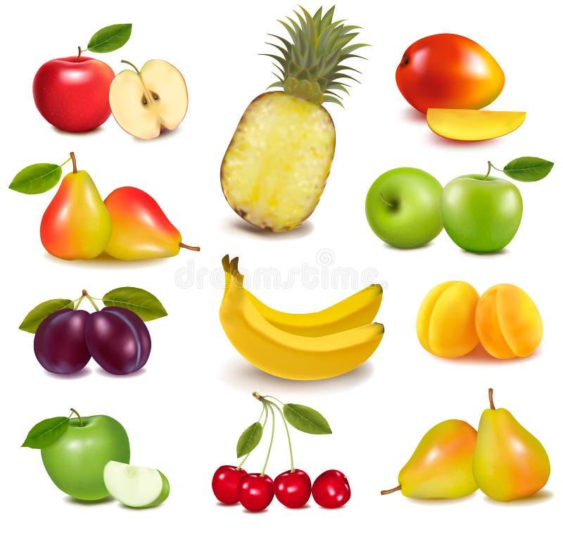 Grupo grande de diversa fruta libre illustration