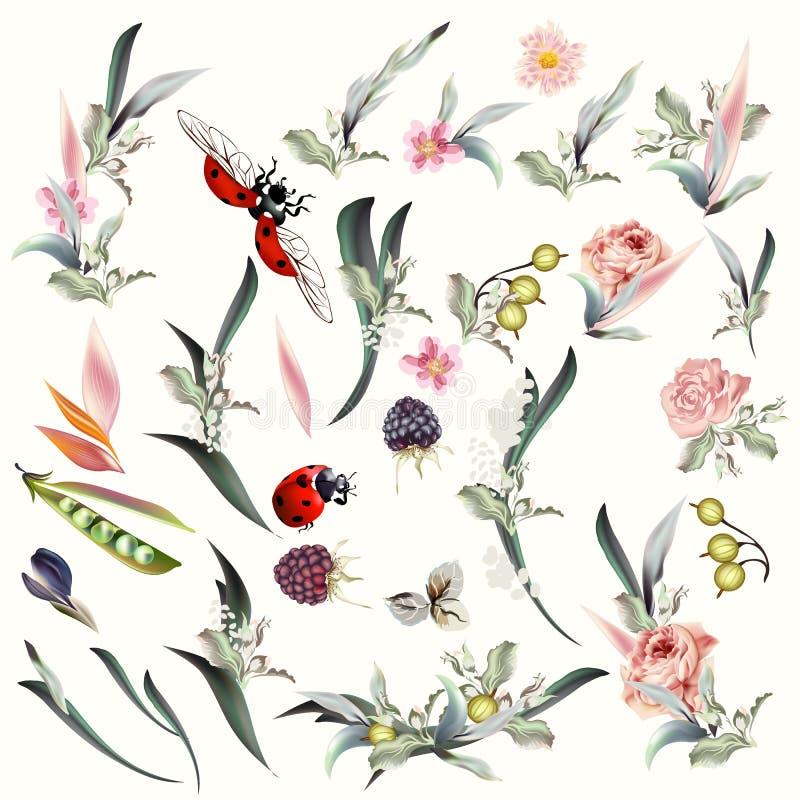 Grupo grande de elementos florais e de flores do vetor ilustração do vetor