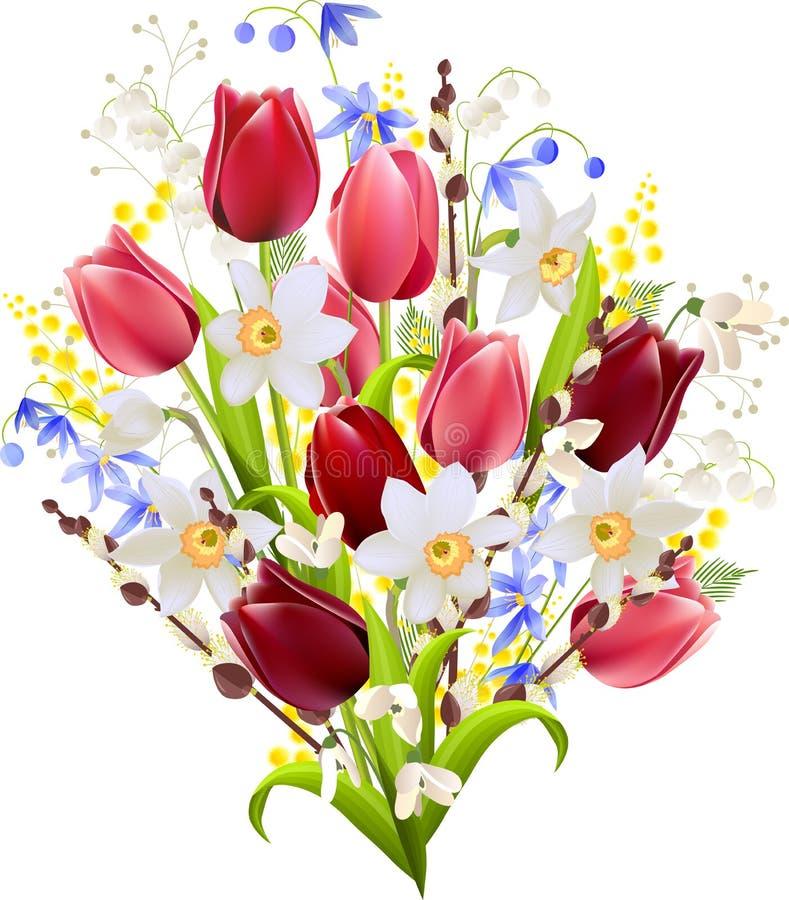 Grupo grande de flores da mola ilustração royalty free