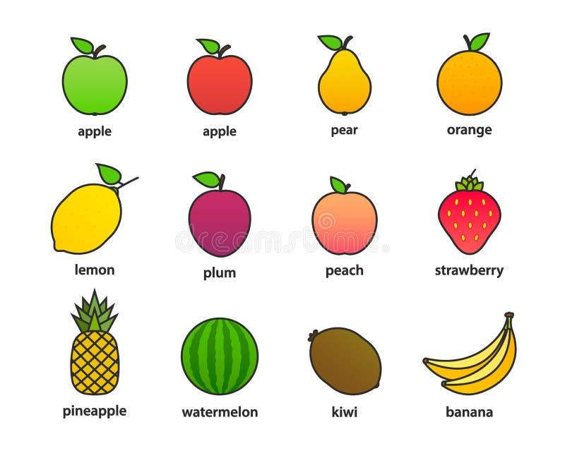 Grupo grande de frutos e de bagas Fruto do ver?o Ma?? do fruto, pera, morango, laranja, p?ssego, ameixa, banana, melancia, abacax ilustração stock