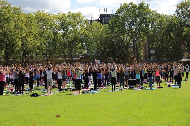 Grupo grande de participantes de la yoga imagen de archivo libre de regalías