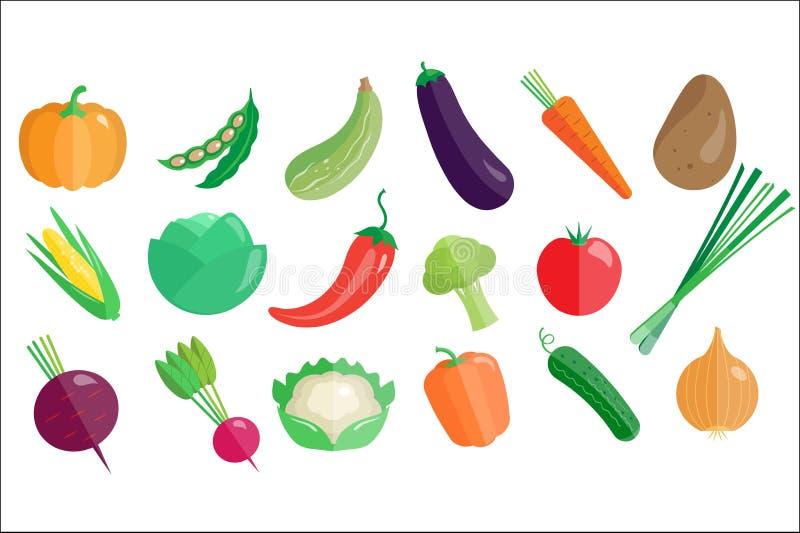 Grupo grande dos legumes frescos, ilustra??es saud?veis do vetor do alimento biol?gico do vegetariano em um fundo branco ilustração royalty free