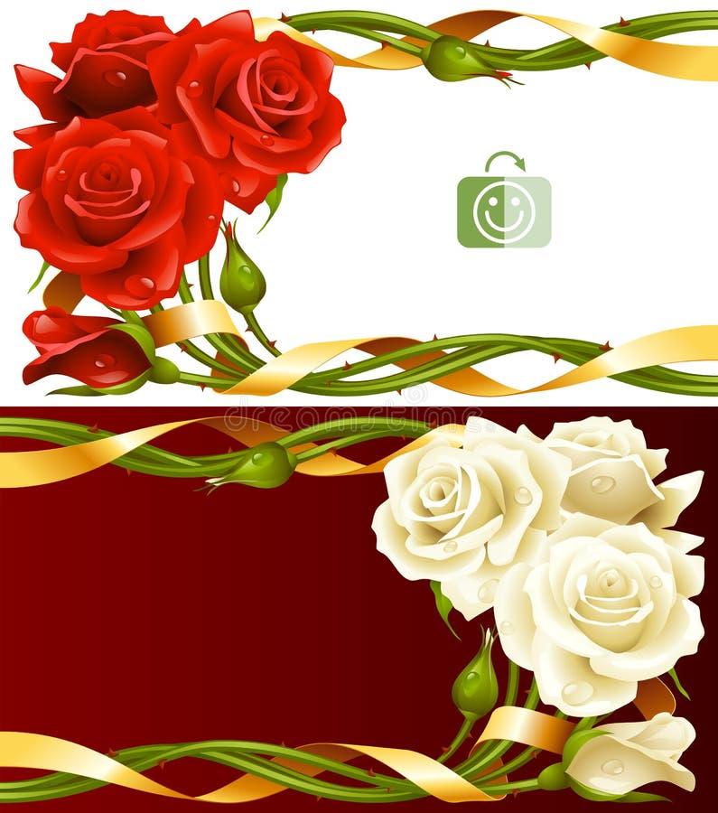 Grupo horizontal do quadro do vetor de rosas vermelhas e brancas ilustração stock