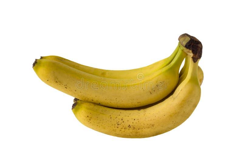 Grupo isolado de passados bananas amarelas brilhantes em um fundo branco fotos de stock royalty free