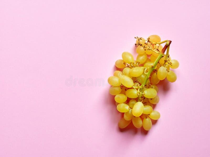 Grupo isolado de um grupo de uvas sem sementes doces no estúdio com fundo cor-de-rosa milenar foto de stock royalty free