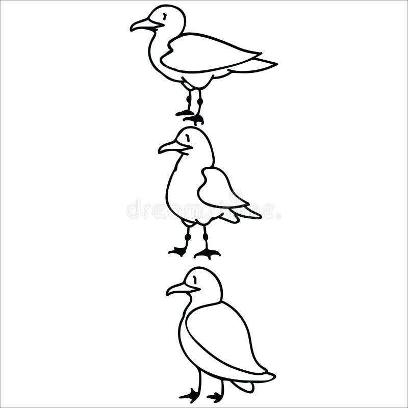 Grupo lindo de sistema monocromático del adorno del ejemplo del vector de la historieta de las gaviotas Clipart aislado exhausto  ilustración del vector