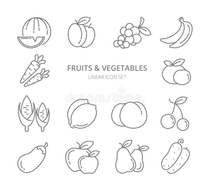 Grupo linear do vetor dos ícones das frutas e legumes ilustração do vetor