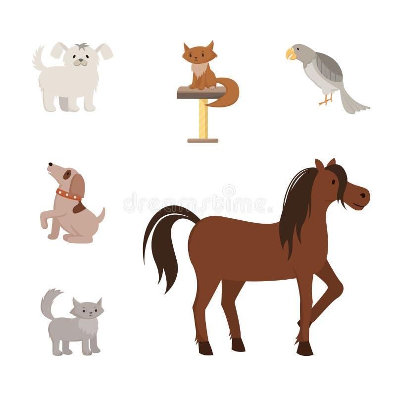 Grupo liso das ilustrações do vetor dos animais domésticos Cães de brinquedo dos desenhos animados, animais de estimação do puro- ilustração do vetor
