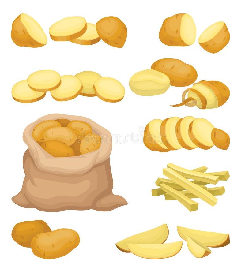 Grupo liso do vetor de ícones da batata Produtos agrícolas naturais Vegetal cru Alimento orgânico e saudável Comer saudável ilustração stock