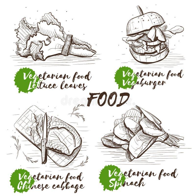 Grupo monocromático das hortaliças do vetor do esboço do vintage, grande projeto para algumas finalidades Alimento saudável do ve ilustração do vetor