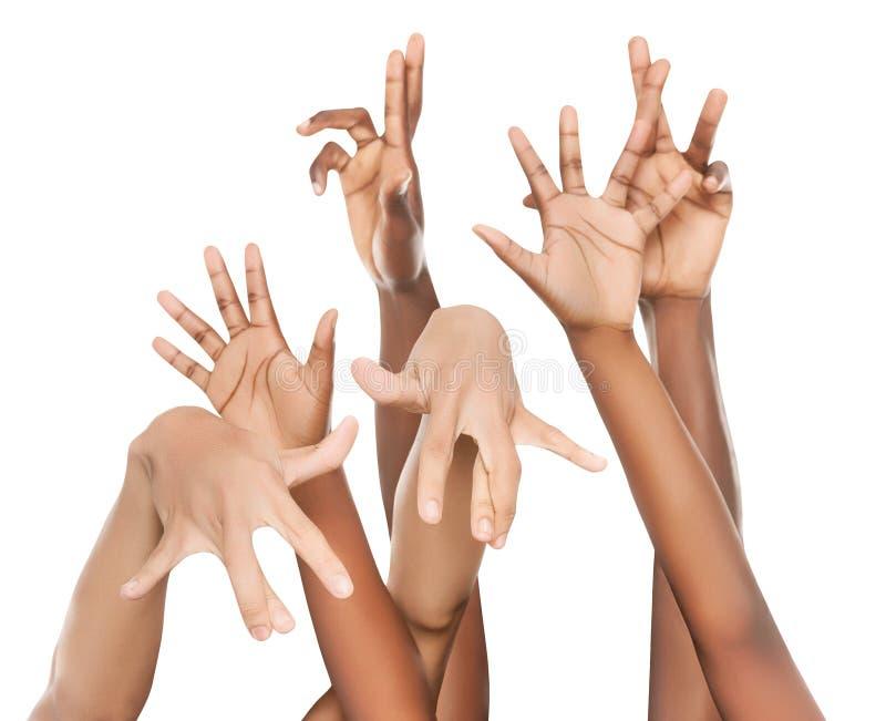 Grupo multirracial de hispanico africano de las manos coloreado imágenes de archivo libres de regalías