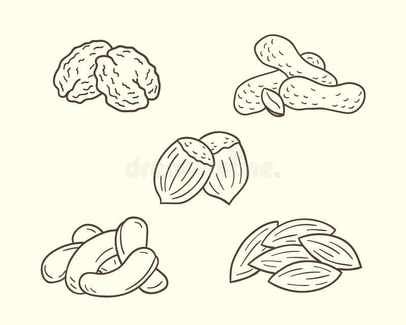 Grupo Nuts do ícone ilustração royalty free