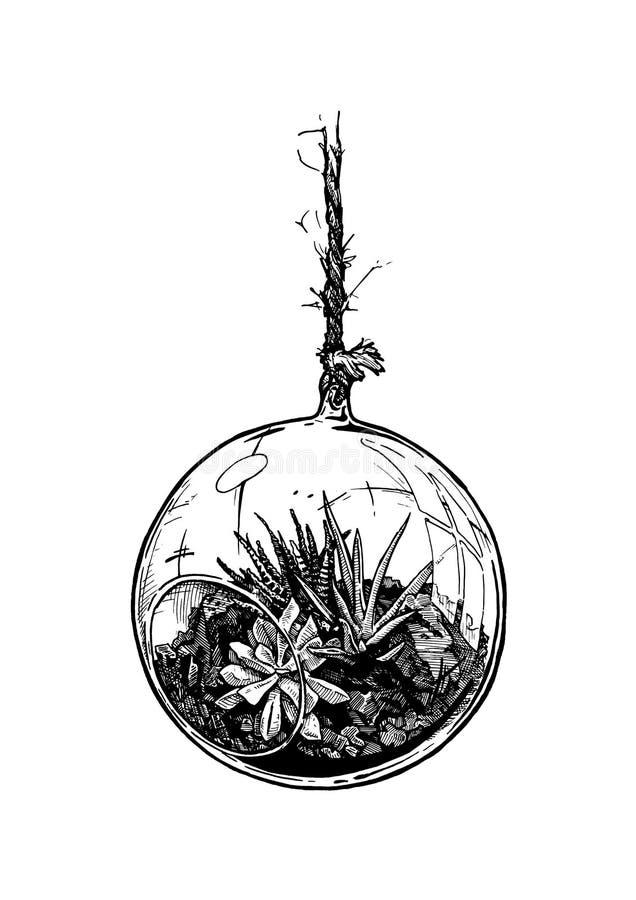 Grupo plantado da bola de vidro dos houseplants em suspensão ilustração stock