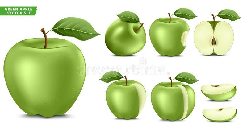 Grupo realístico maduro do vetor do alimento 3D do fruto verde de Apple Metade inteira e versão cortada ilustração stock
