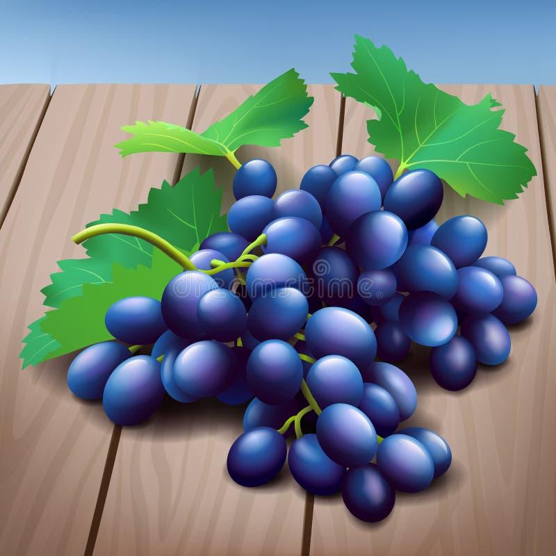 Grupo roxo realístico das uvas com as folhas verdes na textura de madeira ilustração do vetor
