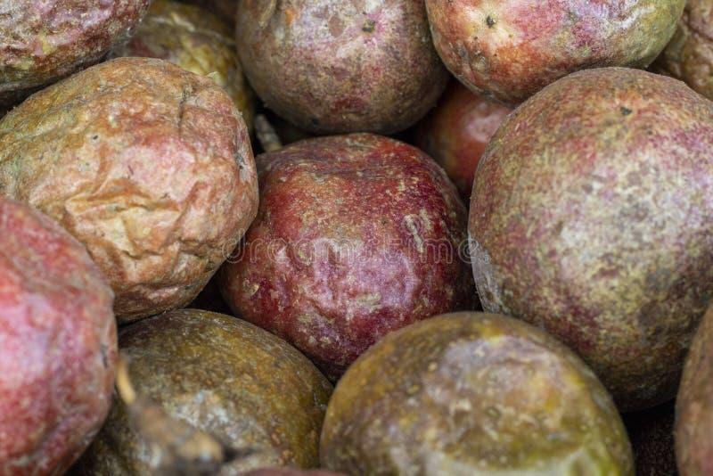 Grupo secado do fruto de paixão no mercado, foto do close up Textura do fruto de paixão Fruto exótico vermelho e marrom fotos de stock