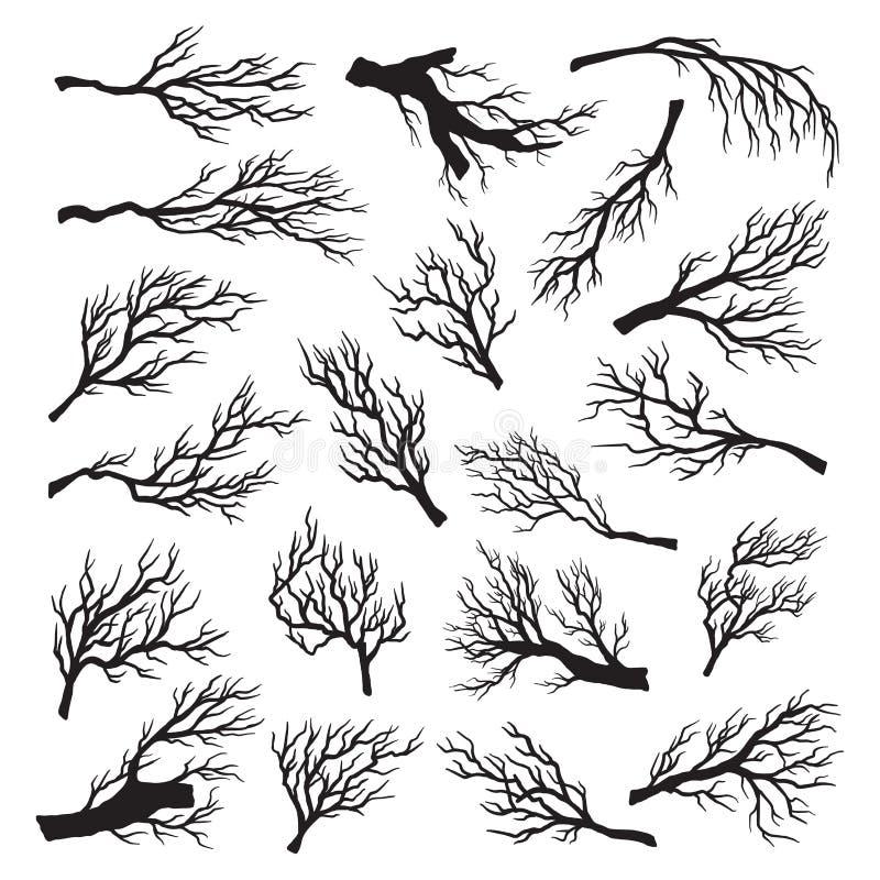 Grupo seco dos ramos de ?rvore, mortos do ambiente e floresta velha ilustração do vetor